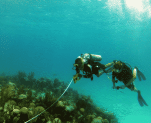 SCUBA diving investigation